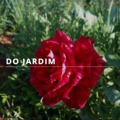 gardenjardin